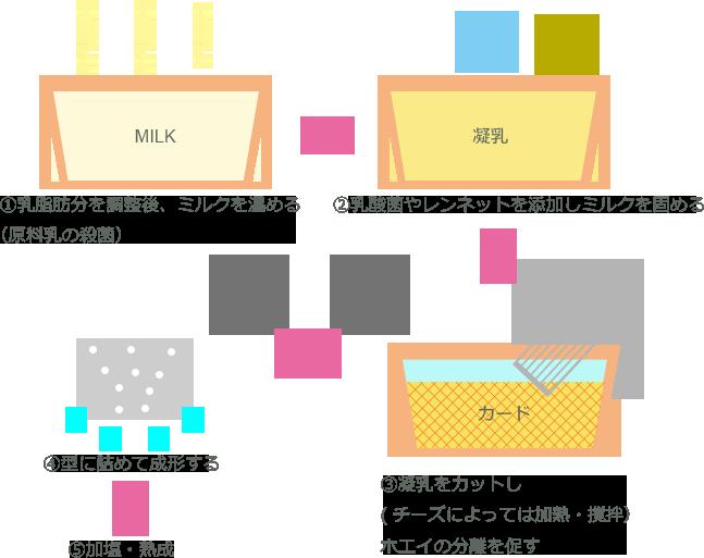 チーズ 製造方法